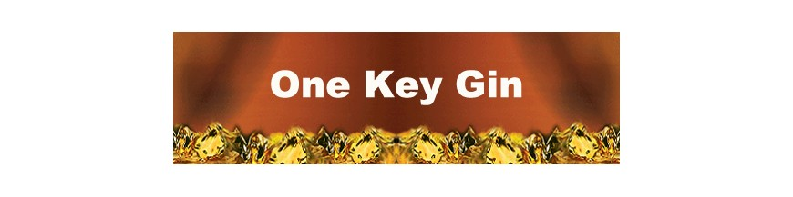 One Key Gin