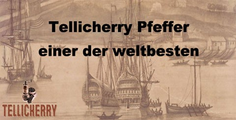 Tellicherry Pfeffer
